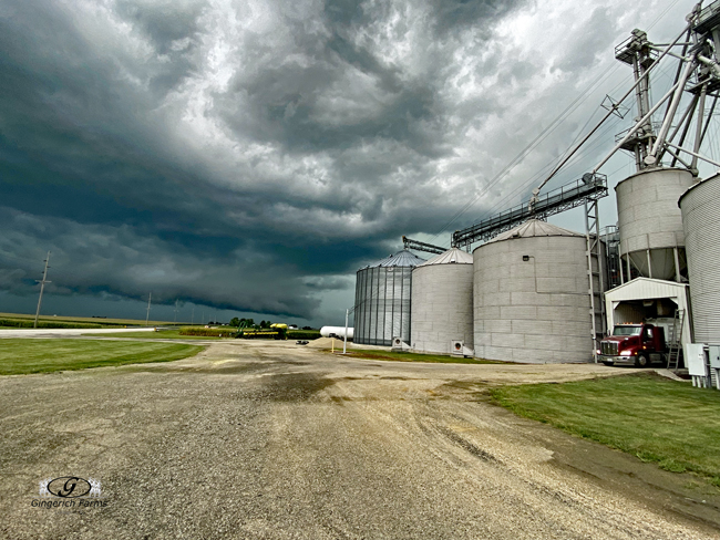 Loading before storm - Gingerich Farms
