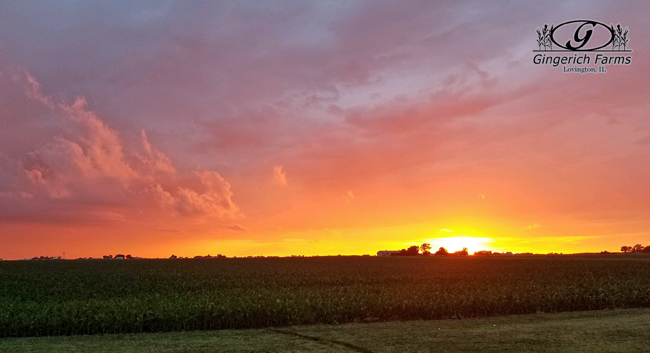Sunset at Gingerich Farms