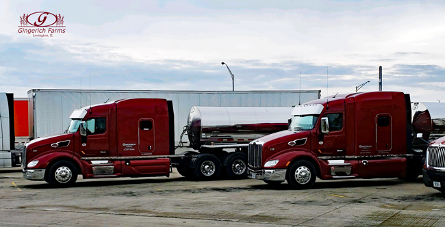 Gingerich Trucks ready for NY trip - Gingerich Farms