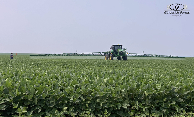 Test bean fungicide - Gingerich Farms