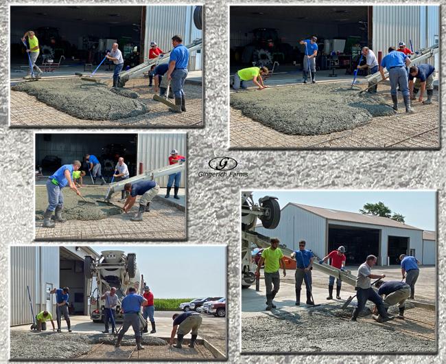 Pouring concrete - Gingerich Farms