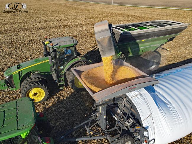 Filling Bag - Gingerich Farms