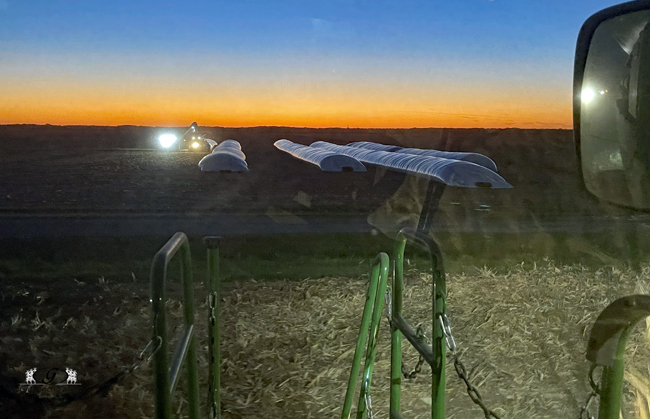 Bagging at night - Gingerich Farms