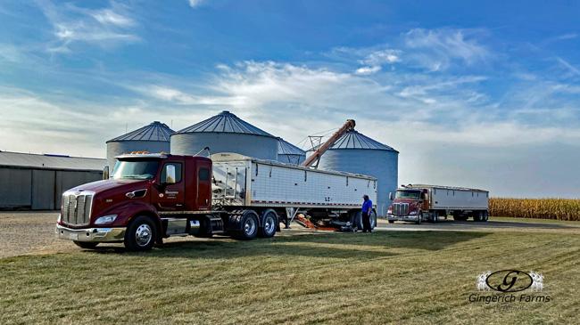 Unloading at bin - Gingerich Farms