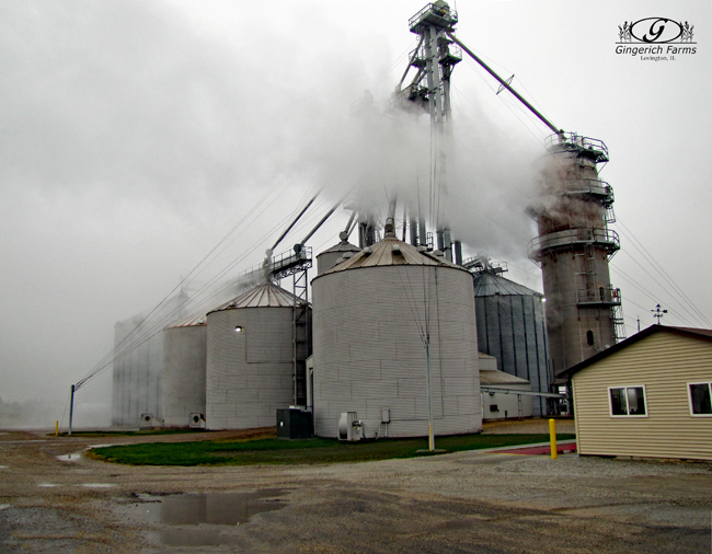 Dryers working at Gingerich Farms
