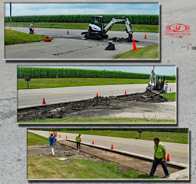 Buggy lane preparation at Gingerich Farms
