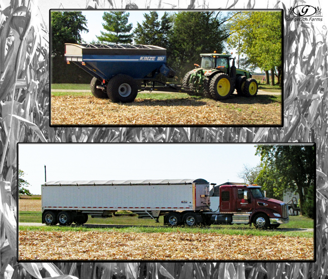 Cart & Truck to next field at Gingerich Farms