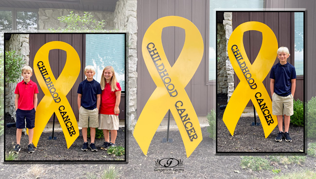 Childhood Cancer - Gingerich Farms