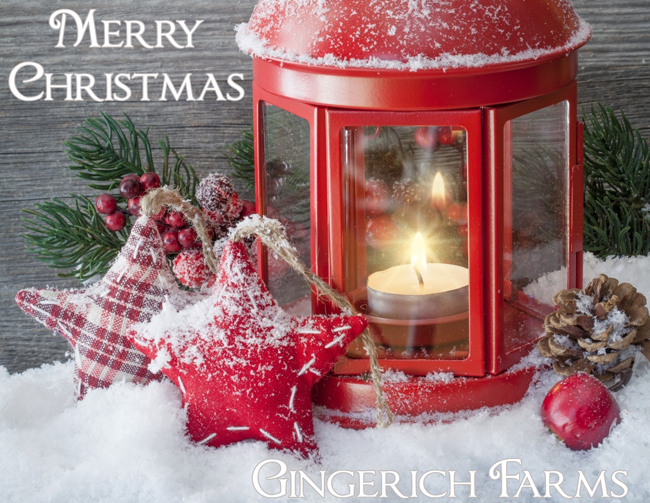 Christmas card from Gingerich Farms