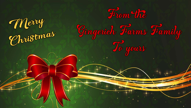 Christmas Wish from Gingerich Farms