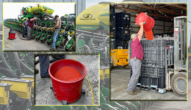 Cleaning out bean planter at Gingerich Farms