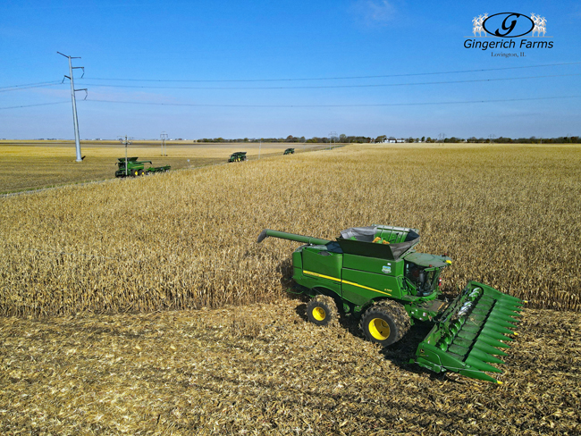 Rest of Harvest crew - Gingerich Farms