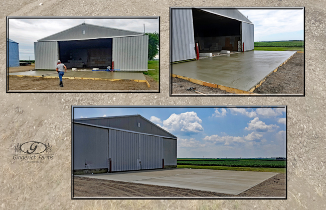 Pour concrete pad at Gingerich Farms