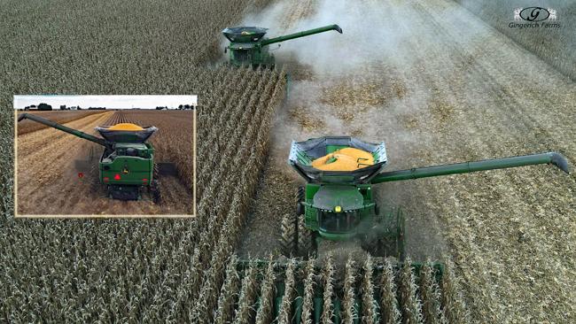 Corn harvest - Gingerich Farms