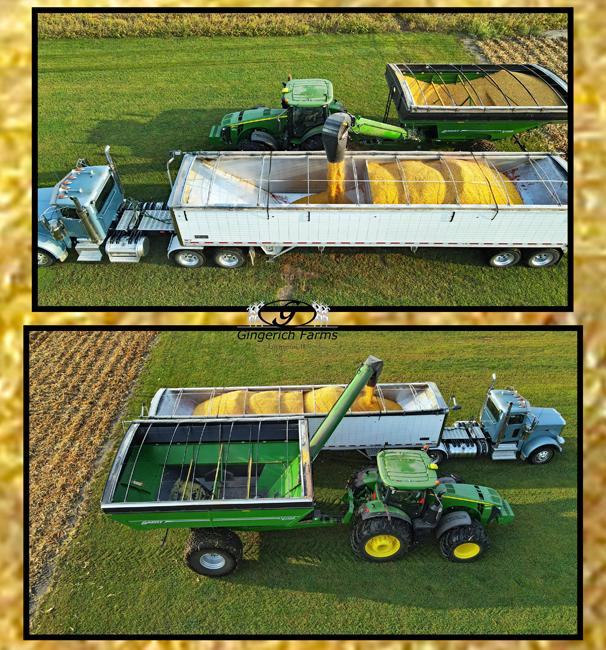 Unloading corn - Gingerich Farms