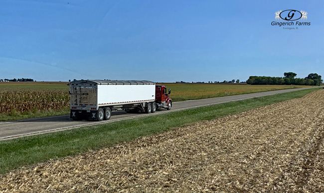 Gingerich Truck - Gingerich Farms