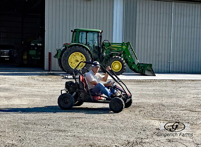 Go Cart - Gingerich Farms