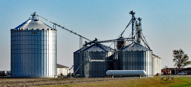 Grain Center at Gingerich Farms
