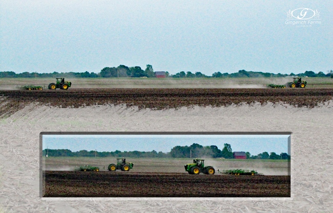 Cultivators in the field at Gingerich Farms