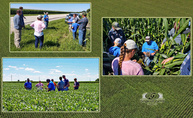 Field Day - Gingerich Farms