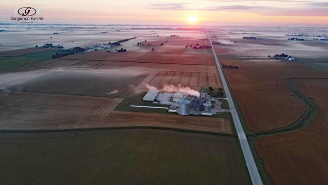 Fog - Gingerich Farms
