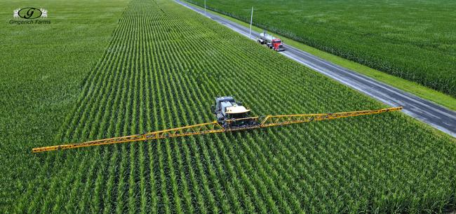 Corn fungicide - Gingerich Farms