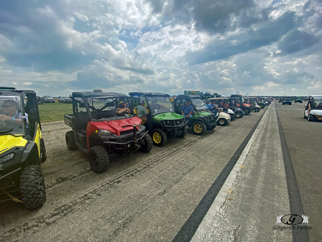 Gators lined up - Gingerich Farms