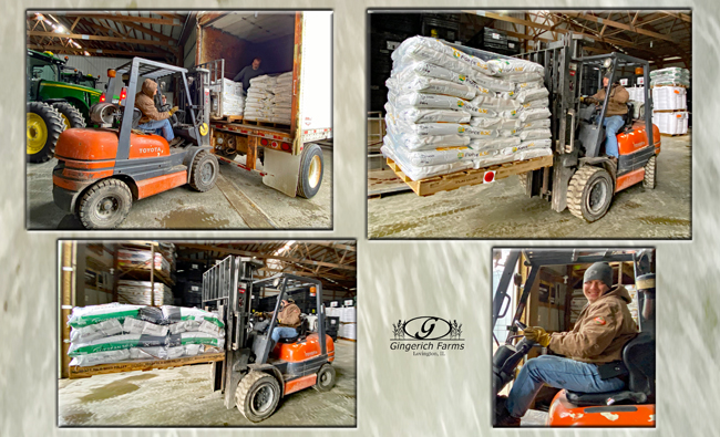 Receiving seed at Gingerich Farms