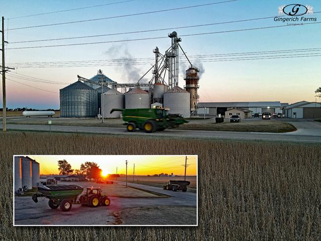 Combine & auger cart - Gingerich Farms