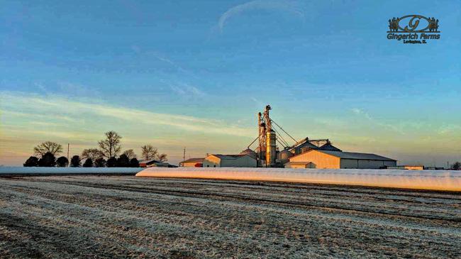 Grain Center at Gingerich Farms