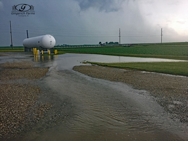 Flooding at Gingerich Farms