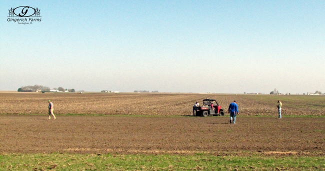 Waiting for planter at Gingerich Farms