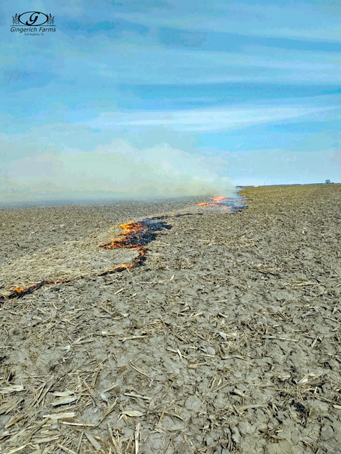Burning corn stalks at Gingerich Farms