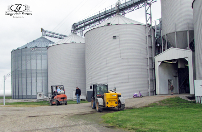 Forklift stuck at Gingerich Farms
