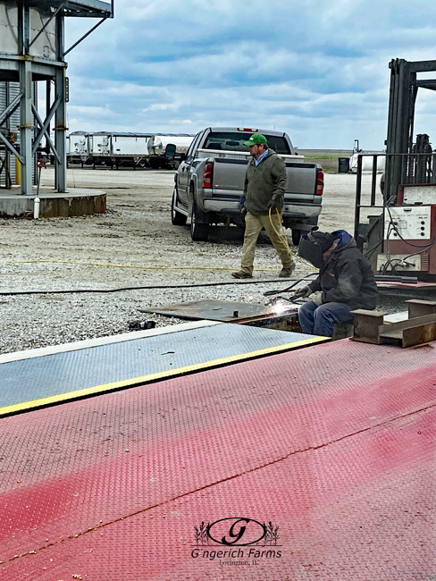 Scale work at Gingerich Farms
