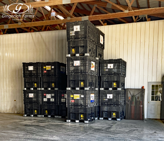 Empty seed boxes at Gingerich Farms