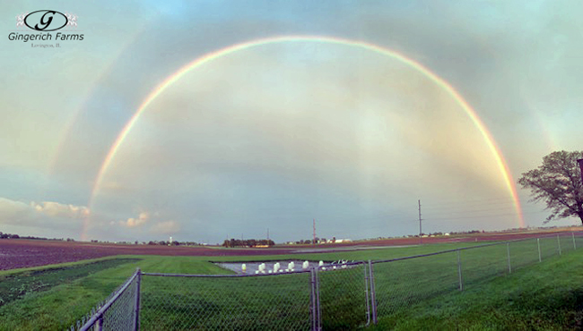 Double rainbow at Gingerich Farms