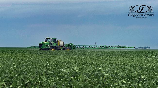 Bean spraying at Gingerich Farms
