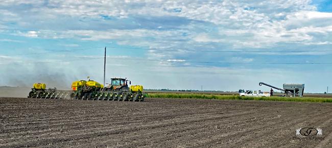 Corn Planter at Gingerich Farms