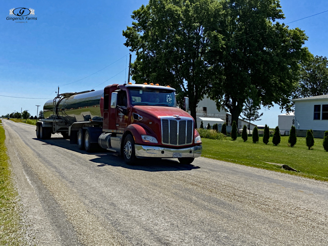 Trucking at Gingerich Farms