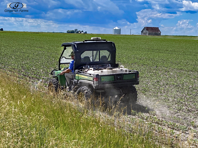 Spraying fields edges at Gingerich Farms