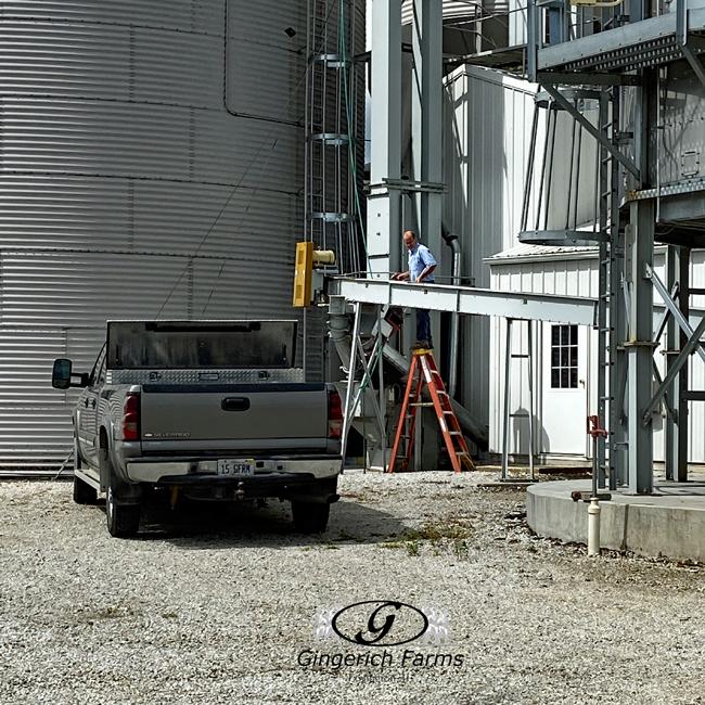 Grain Center work - Gingerich Farms