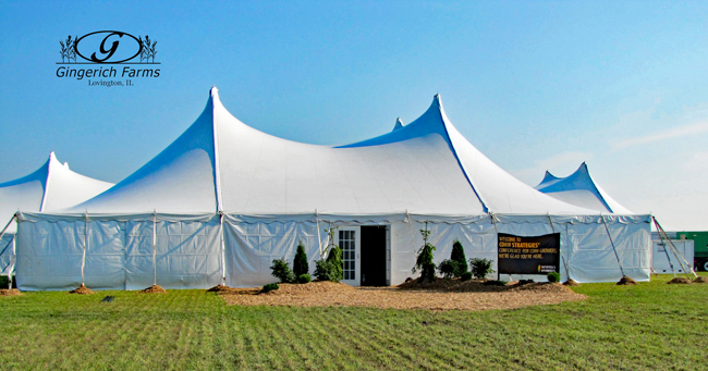 Wyffels Tent at Gingerich Farms