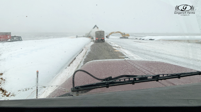 Snowy unloading bags at Gingerich Farms