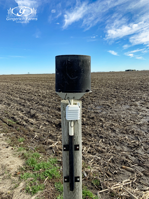 Rain gauges at Gingerich Farms
