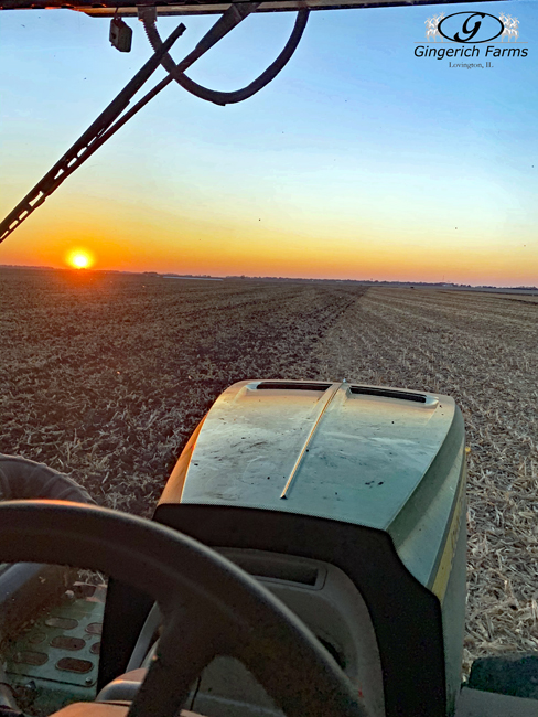 Chiseling - Gingerich Farms