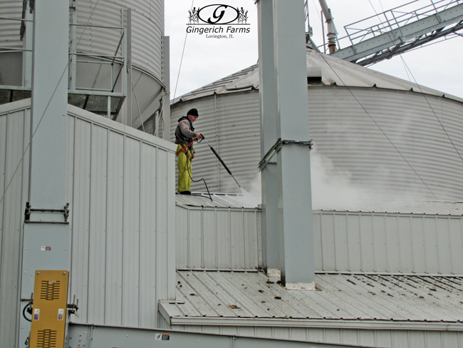 Washing grain center at Gingerich Farms