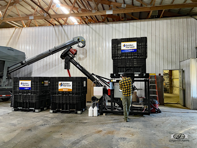 Treating beans - Gingerich Farms