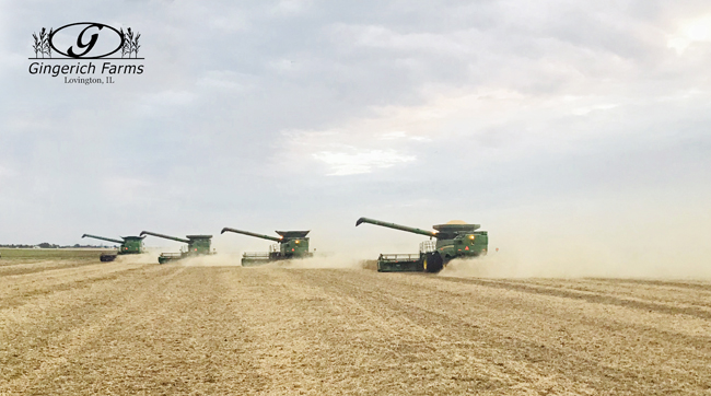 4 combines at Gingerich Farms