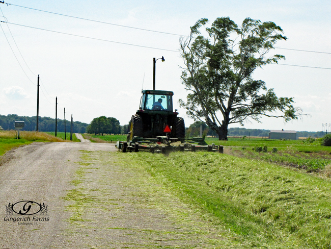 Mowing roadsides at Gingerich Farms